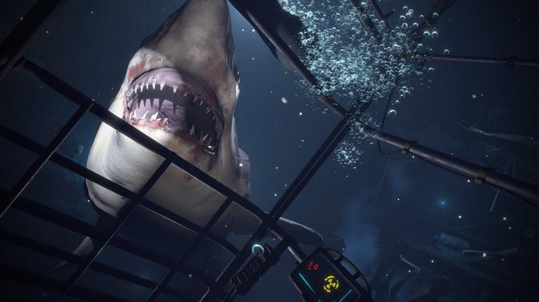 Πίσω καλέ μου καρχαρία!!