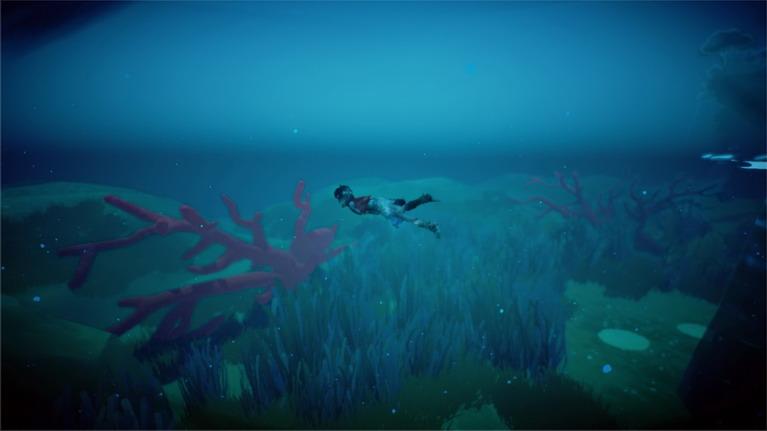Τα κοράλλια του βυθού σας τροφοδοτούν με φρέσκο οξυγόνο.
